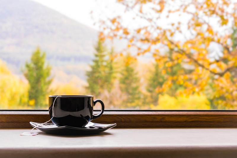 a cup of tea in front of a window with autumn view, why do i need a humidifier in the fall?